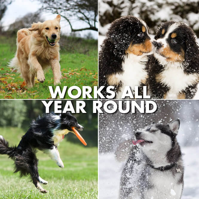 works-all-year-round