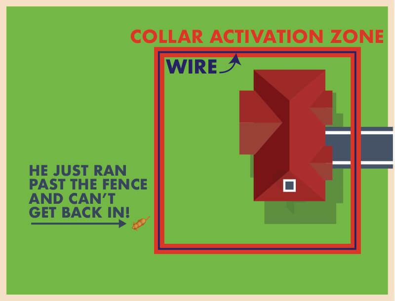 dog-fence-zone